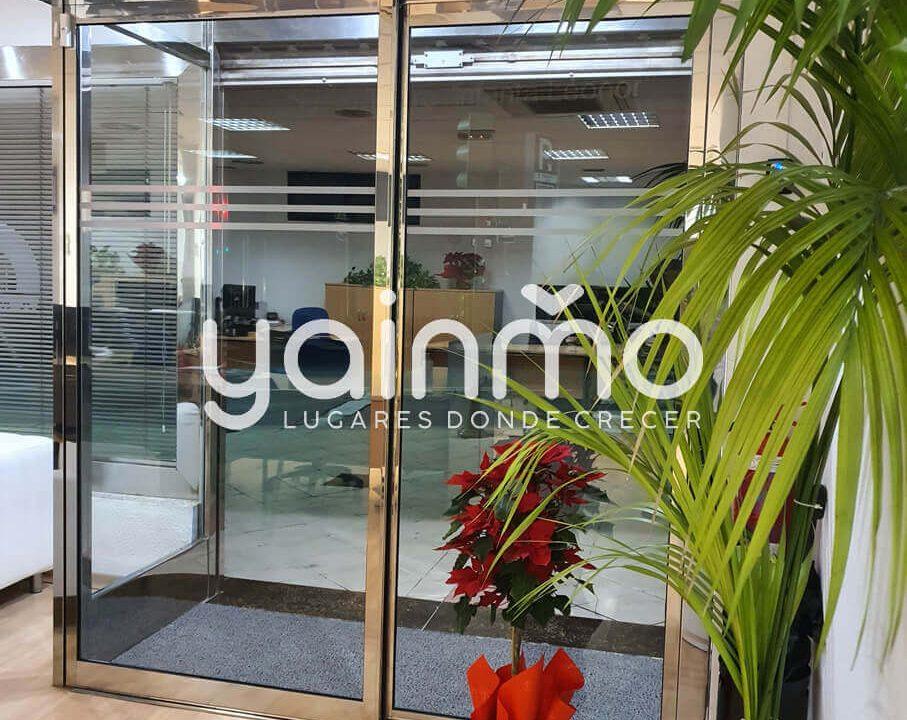 yainmo 376 (10)
