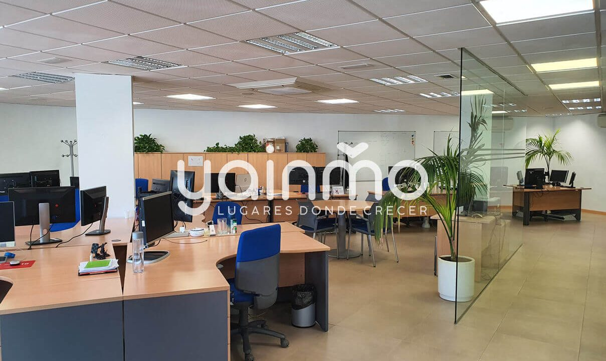 yainmo 376 (16)