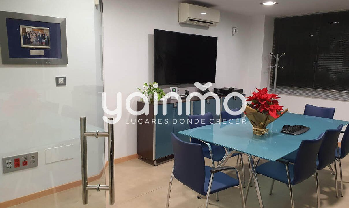 yainmo 376 (34)