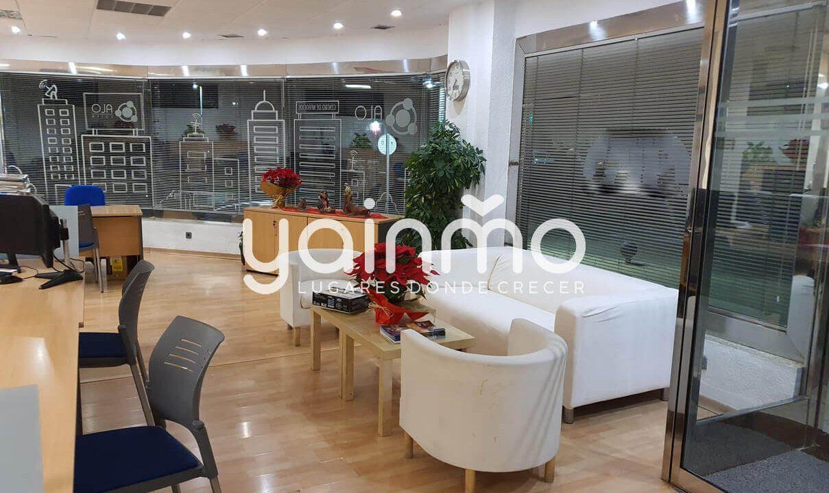 yainmo 376 (6)
